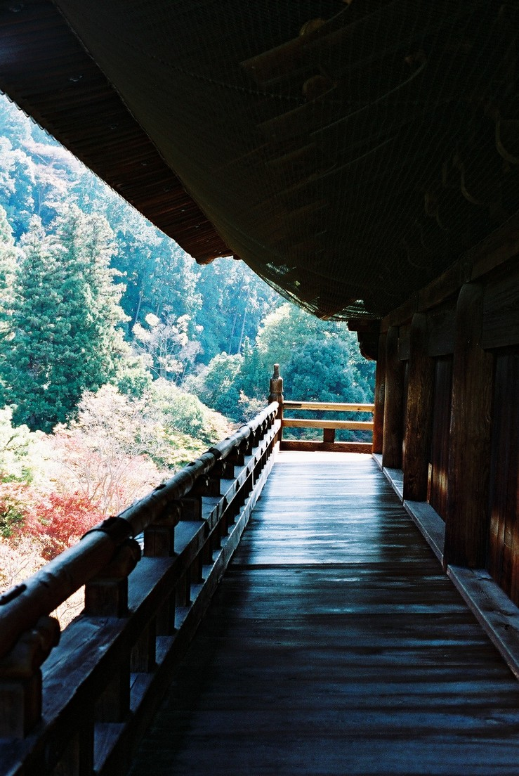 南禪寺登三門
