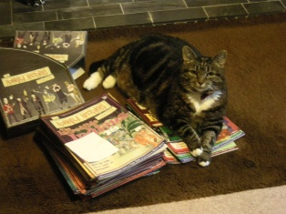 tabbycat and books