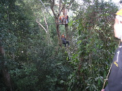 IMG_1808 (King_Of_Hearts) Tags: flight gibbon the gibbons daredevils
