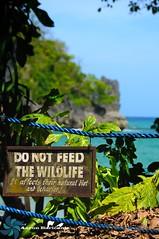 Do Not Feed The Wildlife (Aaron Baricante) Tags: sea beach water nikon do wildlife jungle feed palawan the d300 not