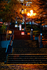 stairs to the market (Sam Scholes) Tags: seattle leaves night stairs digital lights evening washington pikeplacemarket d300