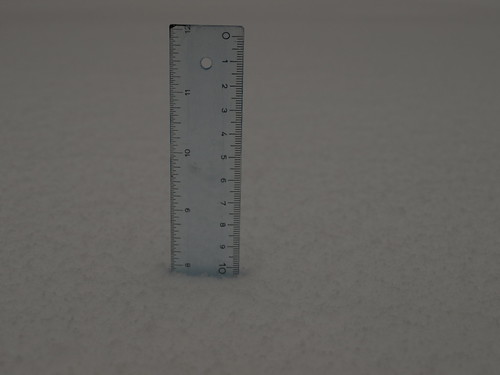 First measurement, 7:50 a.m. - 7 7/8 inches