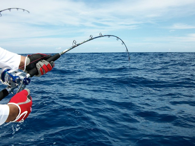 242da60fc71 Daiwa Saltiga LD30 or LD35 2 speed reels for jigging and bottom ...