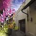 An Alley @ Kauman Batik Village (Infrared)