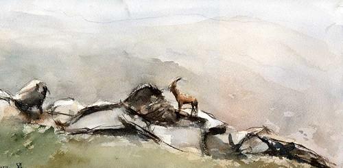 Cabra-en-Gredos-copia