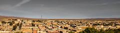 Gueltat Sidi Saad قلتة سيدي سعد (L'œil d'un Naturaliste) Tags: laghouat الأغواط gueltat sidi saad قلتة سيدي سعد