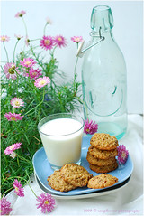 Haferflocken Rosinen Kekse | Oatmeal Raisin Cookies (Soupflower's Blog) Tags: food cookies recipe 50mm baking blog nikon chewy oatmeal vegetarian raisin kekse backen vegetarisch rezept rosinen weich haferflocken d80 flowersoup soupflower haferflockenkekse
