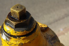 Yellow Hydrant (tixie21) Tags: yellow hydrant