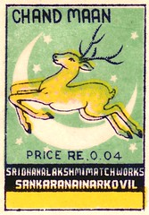 animalallumettes 010