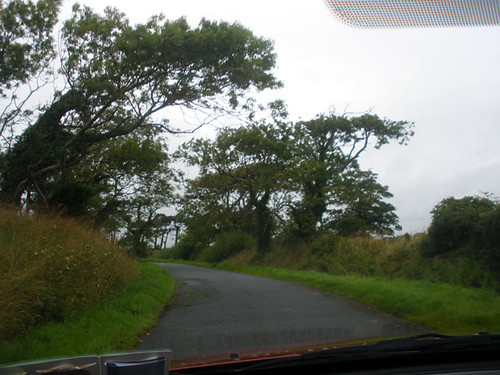 Driving home from Tinahely Show