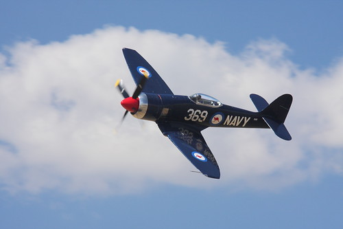 Warbird picture - Hawker Sea Fury