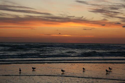 73_sunrise
