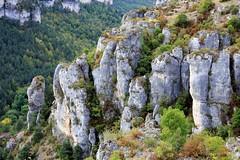 Vacances dans les Gorges de la Jonte, automne et scupltures calcaires naturelles (Meyrueis, Lozère)