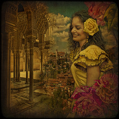 The Rose of Granada. (egold.) Tags: flowers rose spain textures granada andalusia hdr theunforgettablepictures saariysqualitypictures magicunicornverybest magicunicornmasterpiece obramaestra newgoldenseal