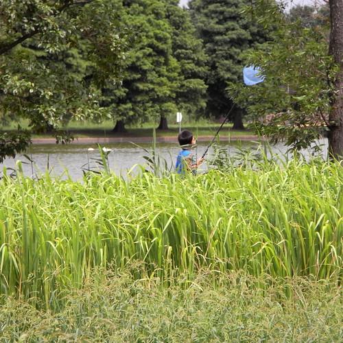 Mizumoto Park 01