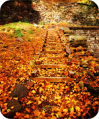 (follow the path) (moorz84) Tags: autumn orange fall leaves yellow pa jimthorpe afhht coffeeshopcolororton