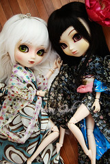 Victoria & Sayuri - Pullips Blanche & Youtsuzu (-Poison Girl-) Tags: new girls white black green eye butterfly eyes doll closed dolls victoria pale wig yukata groove kimono pullip blanche pullips poisongirl sayuri closedeyes obitsu eyechips junplanning eyelaches rewigged rechipped sbhm sbhl pullipblanche youtsuzu pullipyoutsuzu