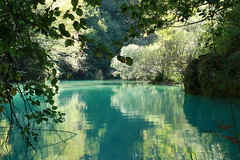 Urederra (begizuria) Tags: blue trees verde green water beautiful rio azul forest agua eau arboles vert rivire bleu arbres bosque belle bella hermosa reflets euskalherria fort basquecountry paisvasco reflects navarra paysbasque ura basoa nafarroa zuhaitzak berde urdina ruisseau oihana urederra iturria isladak nacedero arbolak bakedao