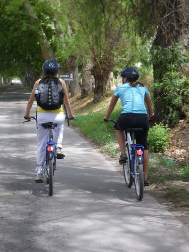 Biking in Mendoza