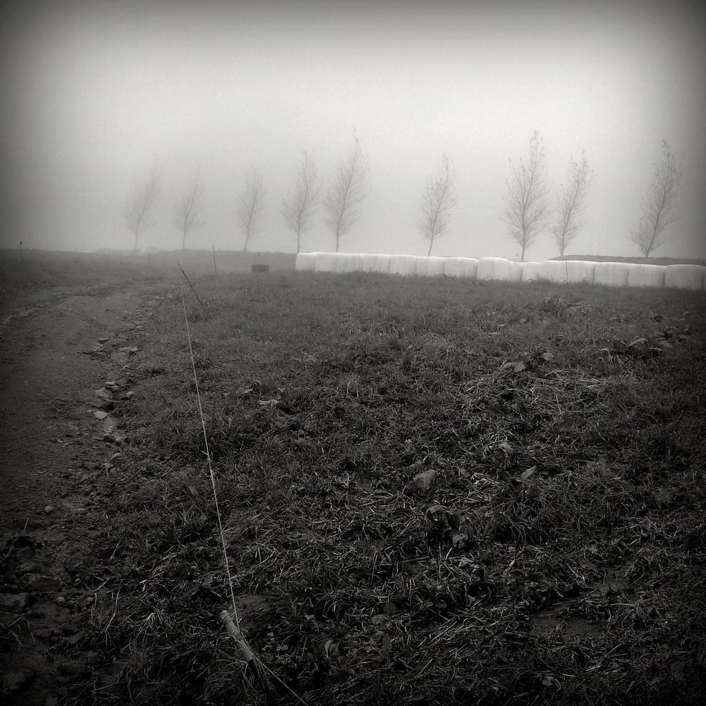 Winter #P1220756