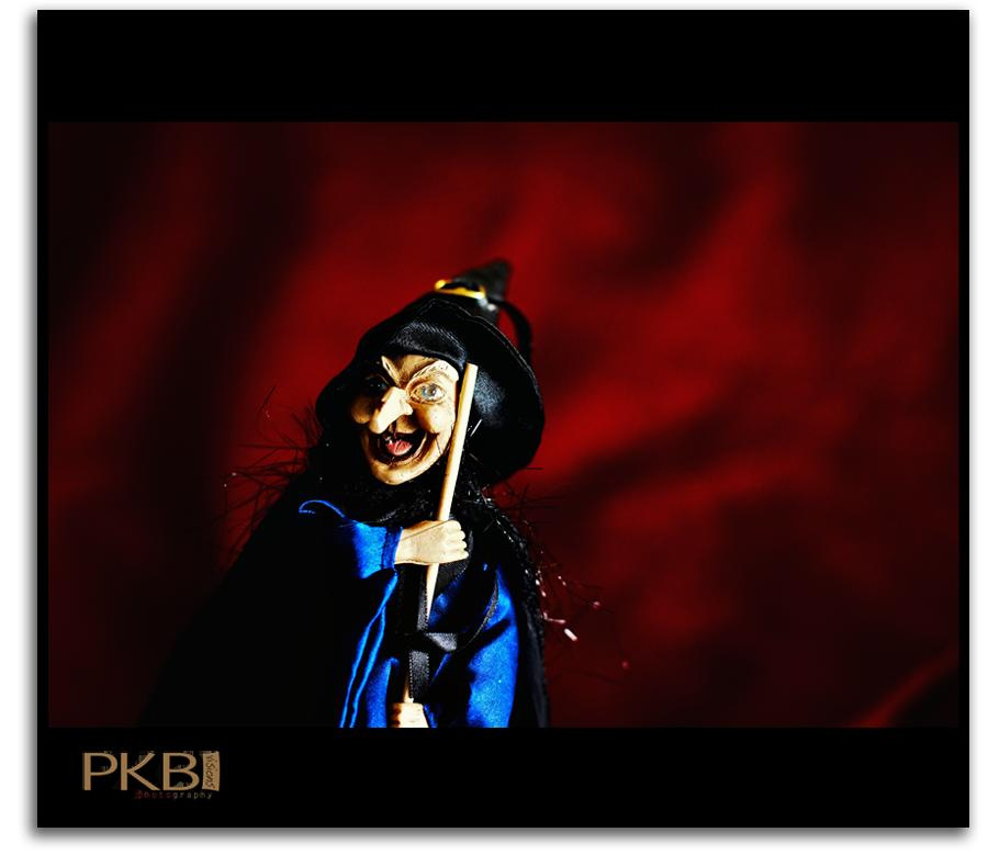 PKB Visions -Witch
