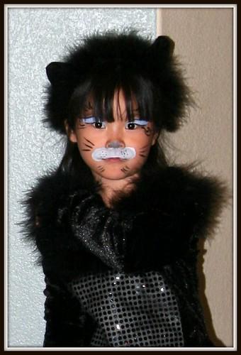 Maddy cat halloween 005