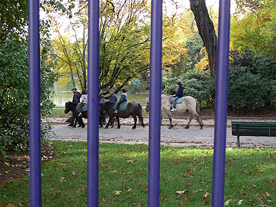 chevaux au parc Montsouris.jpg