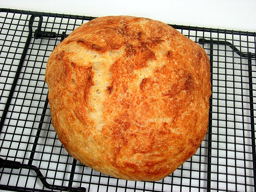 Speedy No-Knead Bread