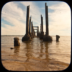 what's left of the pier (perrygrl) Tags: gulfofmexico water coast gulf florida coastal anscoflex stmarks northflorida ttv throughtheviewfinder stmarkswildliferefuge