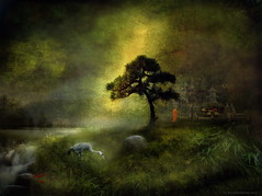Garden of Peace (h.koppdelaney) Tags: life light tree art heron digital photoshop self garden temple freedom energy peace symbol spirit path buddha flight monk buddhism philosophy inner zen mind bonsai meditation wisdom quest awareness metaphor consciousness symbolism psychology archetype vipassana