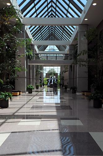 Day 168 - Atrium by Tim Bungert