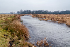 Hunzedal | the Netherlands (frata60) Tags: nikon netherlands nederland d300s nikkor 1685mm landscape landschap zuidlaardermeer winter licht nature natuur natuurgebied hunzedal drenthe