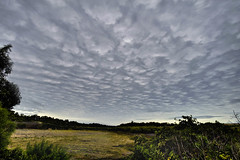 Severe Weather Warning (DarrynSantich) Tags: storm clouds nikon hdr severe wanneroo d700