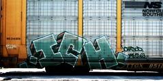 ..ICH. (mightyquinninwky) Tags: road railroad logo geotagged graffiti moving crossing ns tag tracks railway tags 63 yme tagged railcar 09 rails graff graphiti ich 2009 blacktop railroadcrossing ichabod inmotion carcarrier norfolksouthern trainart autorack holyroller ttx paintedtrain railart paintedsteel evansvilleindiana ttgx ⓣ geo:lat=37943546 geo:lon=87627337