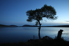 A Still Night. (Gordie Broon.) Tags: longexposure blue tree nature water silhouette fence landscape geotagged photography scotland fishing scenery alba scenic escocia calm reservoir hills highland bluehour inverness schottland ecosse invernessshire scottishhighlands lochduntelchaig canoneos40d breathtakinggoldaward bestcapturesaoi astillnight gordiebroon