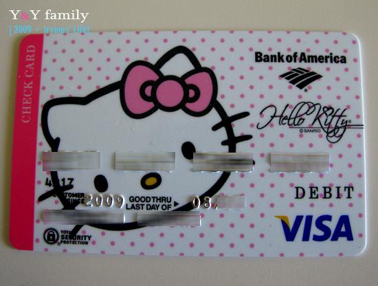 visa & check