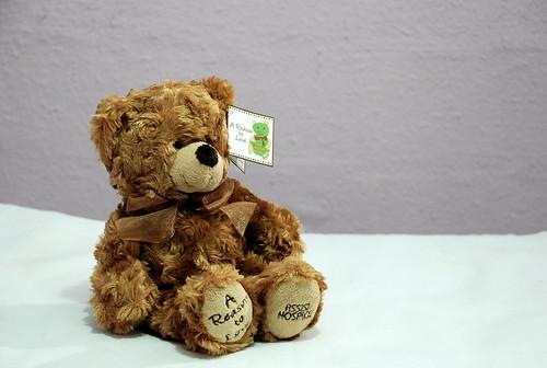Teddy Bear - Assisi Hospice
