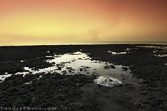 Dead Sea Devil (A.alFoudry) Tags: longexposure light sunset sea summer fish beach water canon dark landscape dead island eos long exposure slow mark full ii shore frame slowshutter shutter devil 5d kuwait usm icarus fullframe ef kuwaiti q8 abdullah  ikarus failaka 1635mm  || f28l kuw q80  xnuzha alfoudry  aalfoudry abdullahalfoudry foudryphotocom canonef1635mmf28lusmii  mark|| 5d|| canoneos5d|| mk|| canoneos5dmark||