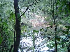 039.View to canoes at Lake Elizabeth (don.warner) Tags: lorne piertopub winterpiertopub