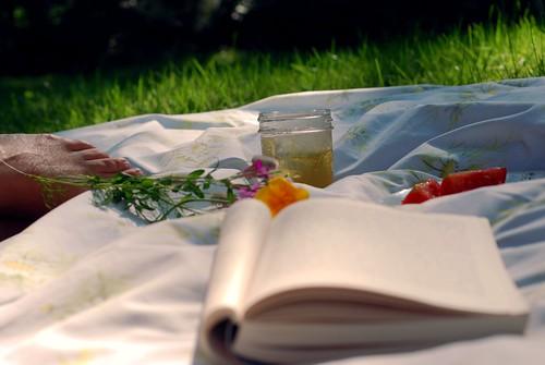 summer day : gratitude 276.365 by kristin~mainemomma