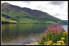 LOCH LOCHY, SCOTLAND (IMAGES OF WALES.... (TIMWOOD)) Tags: flowers lake reflection water clouds scotland highlands yacht sony scottish award glen hills express loch alpha yourself lochlochy polestar a700 grouptripod
