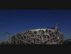 Bird's Nest   (sunnyha) Tags: china blue sky building canon landscape construction asia outdoor chinese beijing bluesky tokina photograph  olympic    birdsnest chine photographier  skyblue  olympicgames nationalstadium     beijingchina         eos450d   chineselandscape 450d thebirdsnest cmwd atx165prodx tokinaaf1650mmf28 cmwdblue chinasnationalstadium  tokina1650mmf28atx165prodx  sunnyha