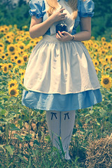 Alice in Wonderland - If I had a World of my own... (Brandon Christopher Warren) Tags: old blue red rabbit green girl yellow vintage petals nc bottle nohead tea bokeh alice gorgeous rocky disney sunflowers blonde historical mystical protective wonderland aliceinwonderland hickory whiterabbit drinkme helianthusannus alicewonderland hickorync inwonderland aestheticallypleasing canoneos5dmarkii brandonwarren ifihadaworldofmyown bigwonderlandsunflowerfield historicaloldbottle