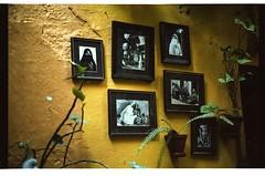 Blakans,Belgrade,Leica M6,Portra 160 Vc,Pictures,Voigtlander Nokton 35mm f1.4 MC