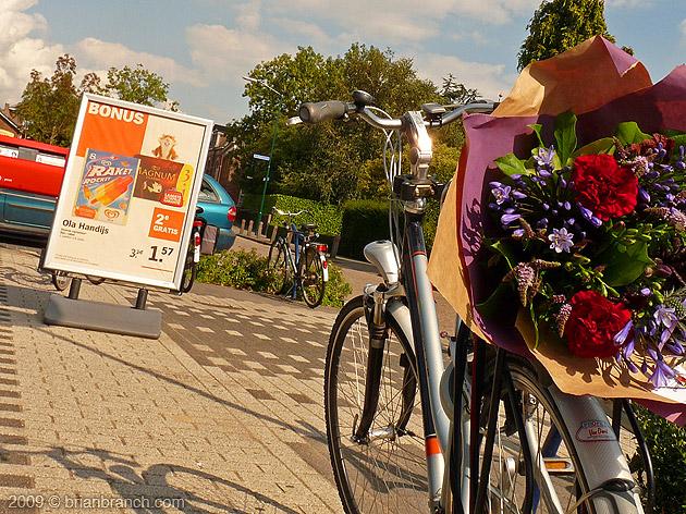 P1040155_flowers_bike