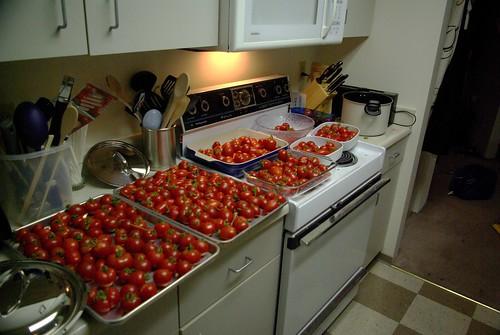2009-08-31 Making Sauce (13)