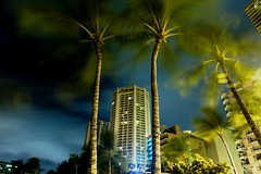 WAIKIKI MIDNIGHT DANCING PALMS (ANVAR - RUSSIANTEXAN ) Tags: longexposure beach palms hawaii dance nikon nightshot twist resort honolulu russiantexan supershot explored d700 anvarkhodzhaev russiantexas exploredoct62009387 svetan svetanphotography
