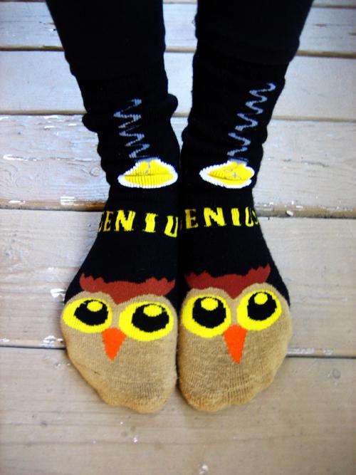 Owl Socks S