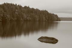 cranberry lake Adirondack's (Chip Renner) Tags: kayak fineart adirondacks kayaking cranberrylake chiprenner pinholerenner
