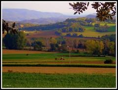 Camps de tardor (Lisern) Tags: autumn horse tractor automne landscape caballo cheval paisaje otoo paysage cavall tardor bergued avi pisatge lisern